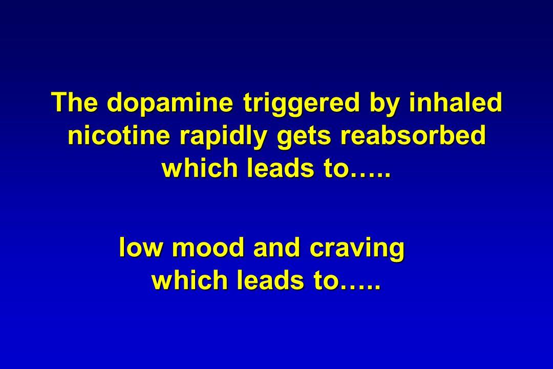 Regular smoking leads to a 300% increase in brain nicotine receptors