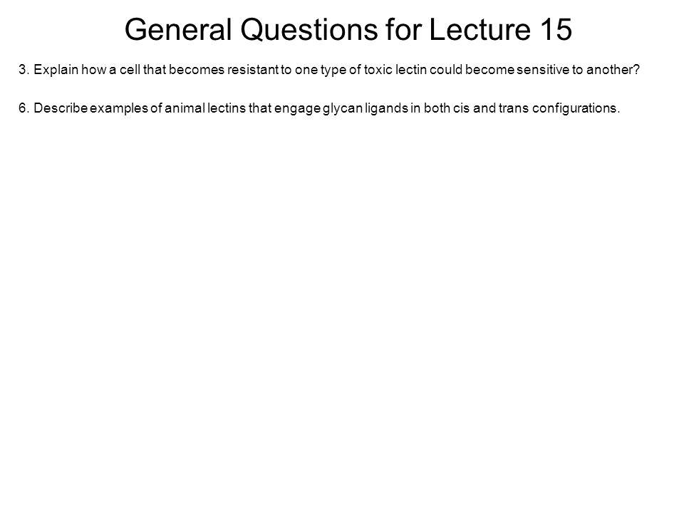 General Questions for Lecture 15 3.