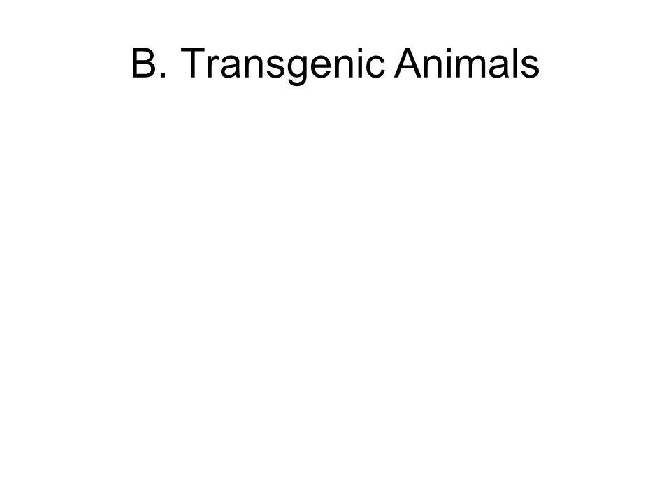 B. Transgenic Animals