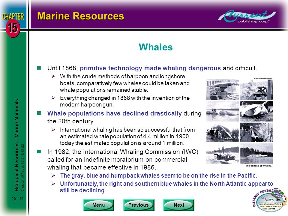 MenuPreviousNext 15 - 11 Whales nUntil 1868, primitive technology made whaling dangerous and difficult.