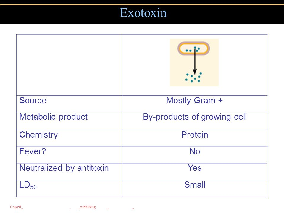 Copyright © 2004 Pearson Education, Inc., publishing as Benjamin Cummings Exotoxin SourceMostly Gram + Metabolic productBy-products of growing cell ChemistryProtein Fever No Neutralized by antitoxinYes LD 50 Small