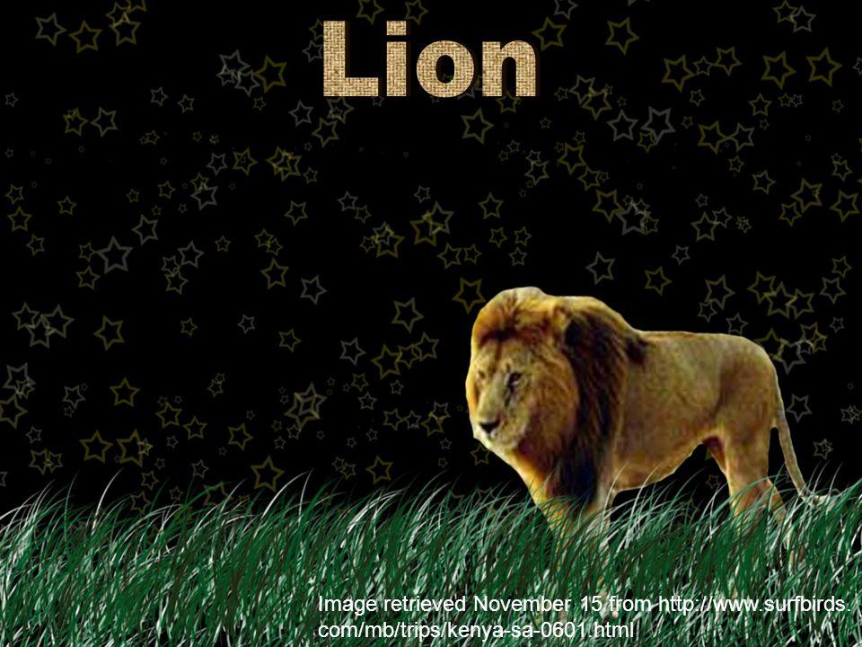 Image retrieved November 15 from http://1kai.dokkyomed. ac.jp/mammal/en/living/macropus_rufus.html