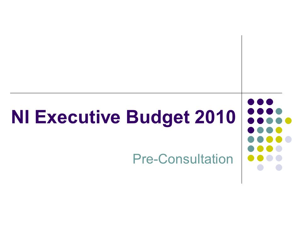NI Executive Budget 2010 Pre-Consultation