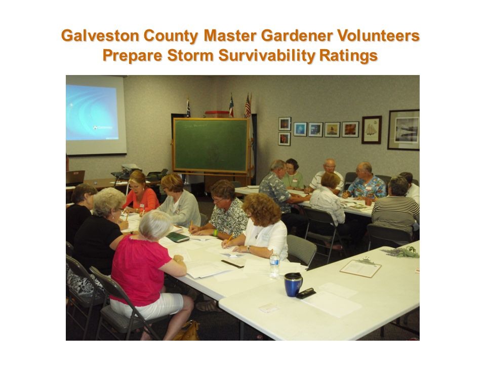 Galveston County Master Gardener Volunteers Prepare Storm Survivability Ratings