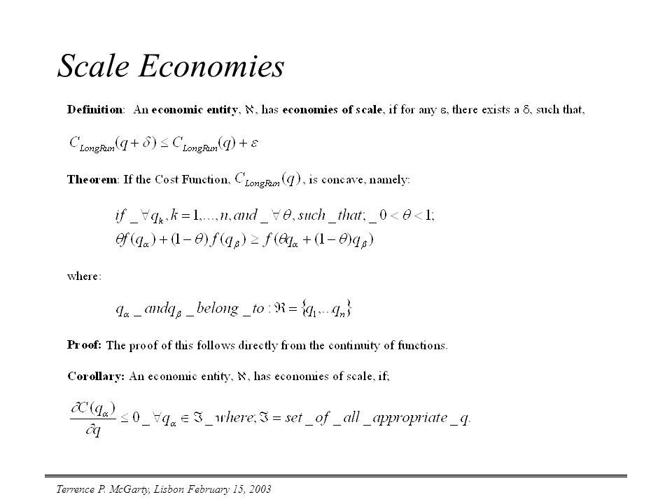 Terrence P. McGarty, Lisbon February 15, 2003 Scale Economies