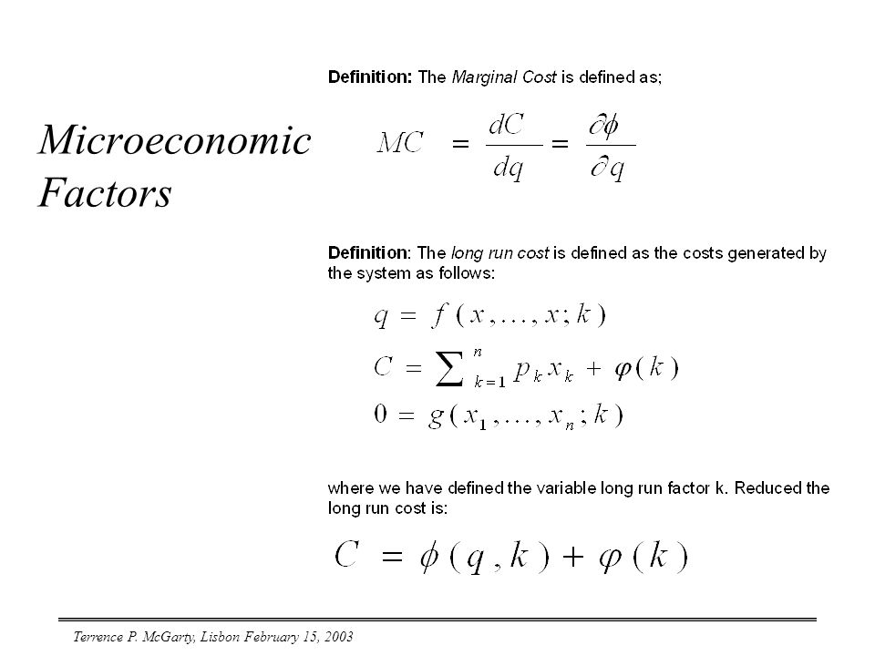 Terrence P. McGarty, Lisbon February 15, 2003 Microeconomic Factors
