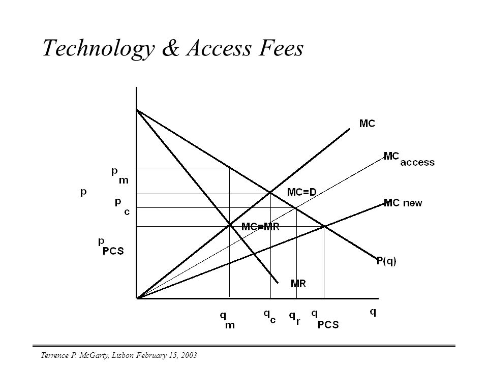 Terrence P. McGarty, Lisbon February 15, 2003 Technology & Access Fees