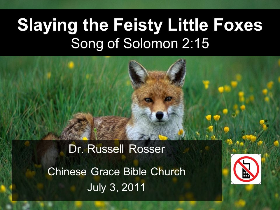 07.03.20112 Song of Solomon 2:15 (NIV, 1984) 15 Catch for us the foxes, the little foxes that ruin the vineyards, our vineyards that are in bloom.