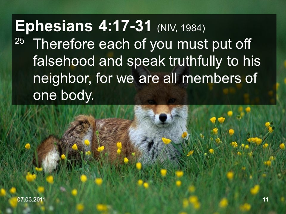 07.03.201111 Ephesians 4:17-31 (NIV, 1984) 25 Therefore each of you must put off falsehood and speak truthfully to his neighbor, for we are all members of one body.