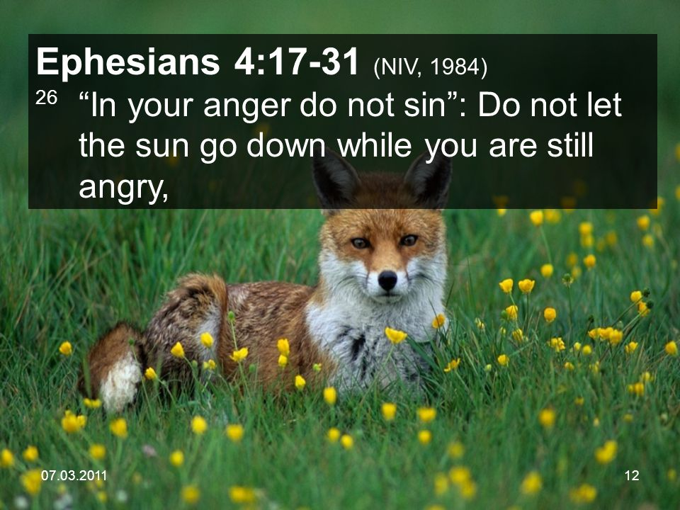 07.03.201112 Ephesians 4:17-31 (NIV, 1984) 26 In your anger do not sin : Do not let the sun go down while you are still angry,