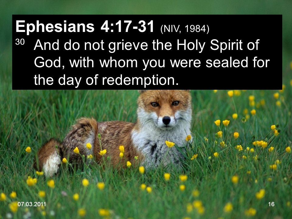 07.03.201116 Ephesians 4:17-31 (NIV, 1984) 30 And do not grieve the Holy Spirit of God, with whom you were sealed for the day of redemption.