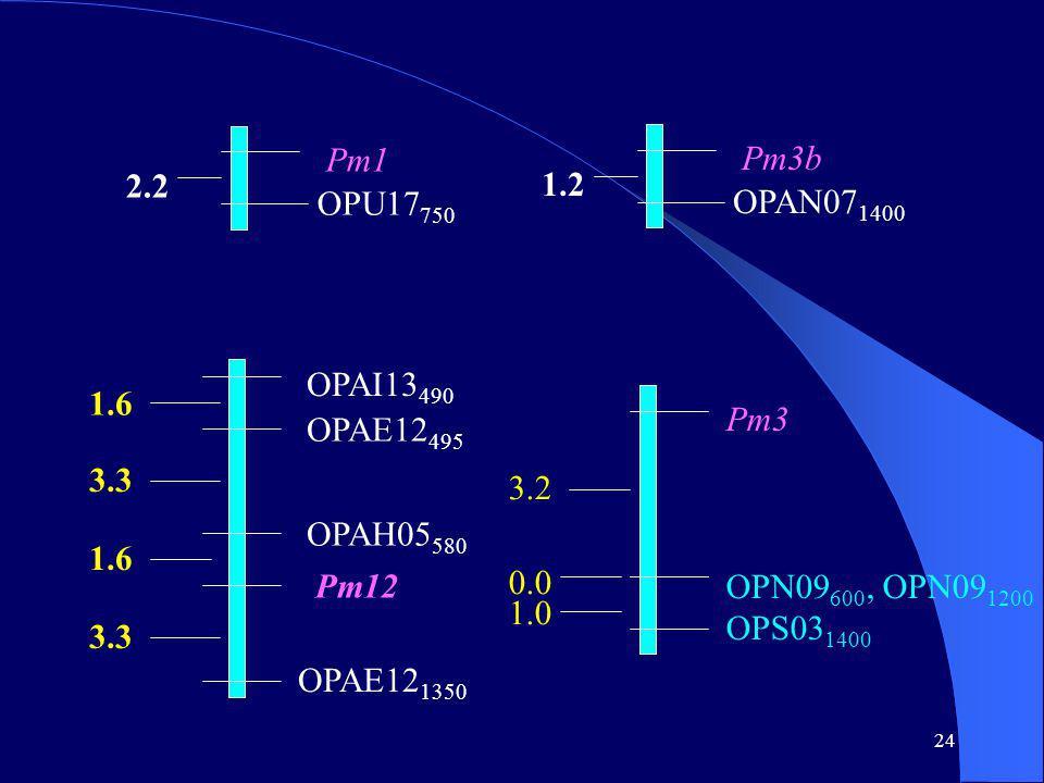 24 Pm1 OPU17 750 2.2 Pm3b OPAN07 1400 1.2 OPAI13 490 OPAE12 495 OPAH05 580 Pm12 OPAE12 1350 1.6 3.3 1.6 3.3 3.2 0.0 1.0 Pm3 OPN09 600, OPN09 1200 OPS03 1400