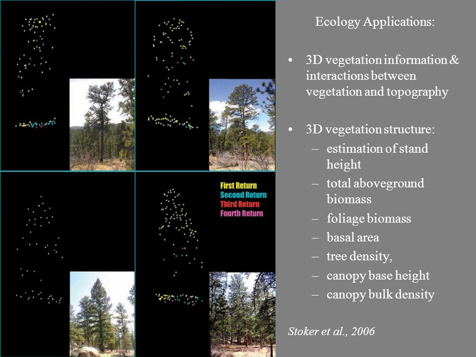 Ecology Applications: 3D vegetation information & interactions between vegetation and topography 3D vegetation structure: –estimation of stand height –total aboveground biomass –foliage biomass –basal area –tree density, –canopy base height –canopy bulk density Stoker et al., 2006