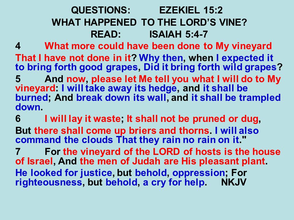 QUESTIONS:EZEKIEL 15:2 WHAT HAPPENED TO THE LORD'S VINE.