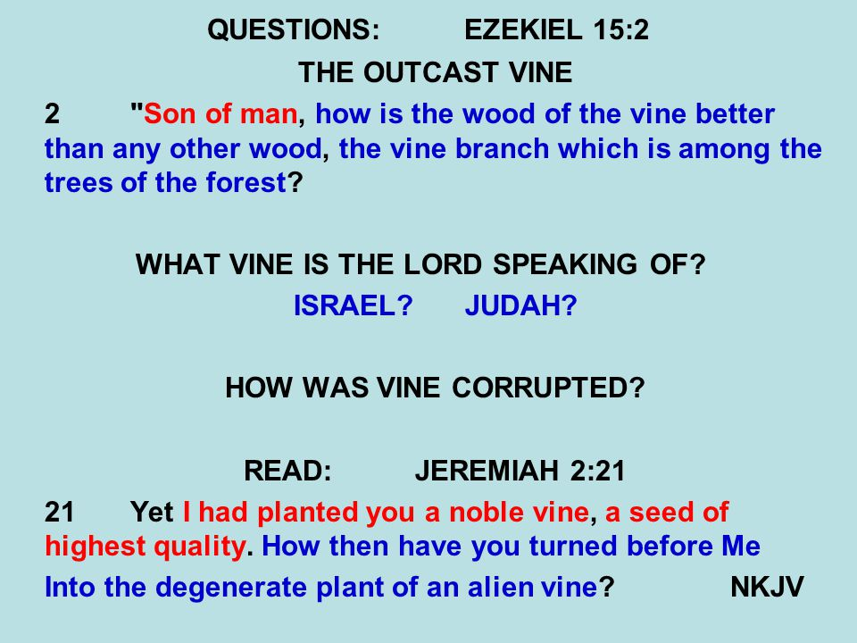 QUESTIONS:EZEKIEL 15:2 THE OUTCAST VINE 2 Son of man, how is the wood of the vine better than any other wood, the vine branch which is among the trees of the forest.