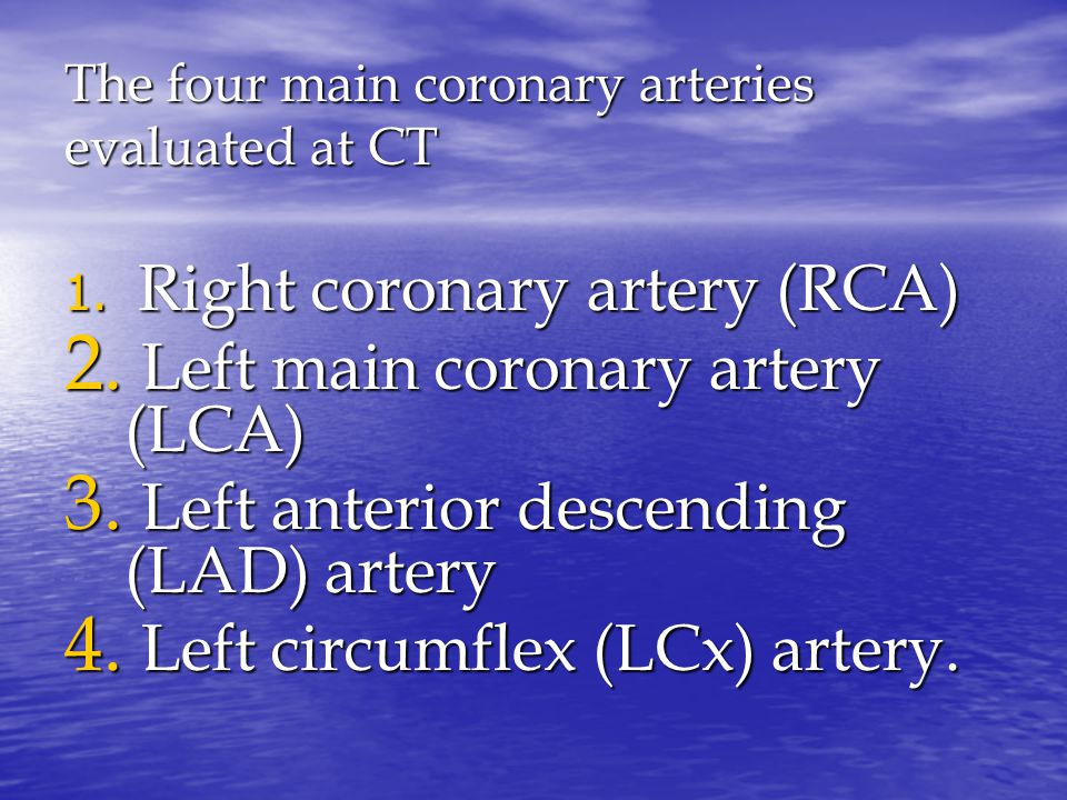 The four main coronary arteries evaluated at CT 1.