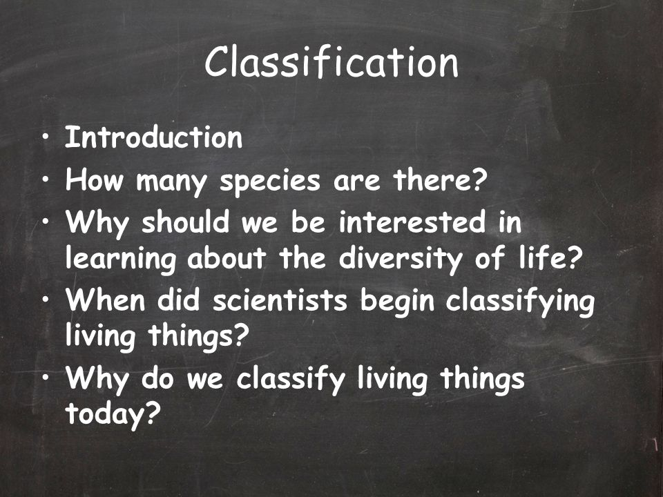 Classification Introduction How many species are there.