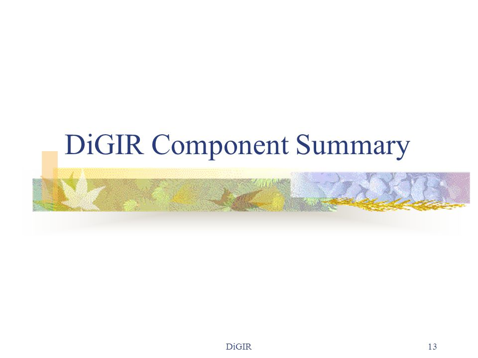 DiGIR13 DiGIR Component Summary