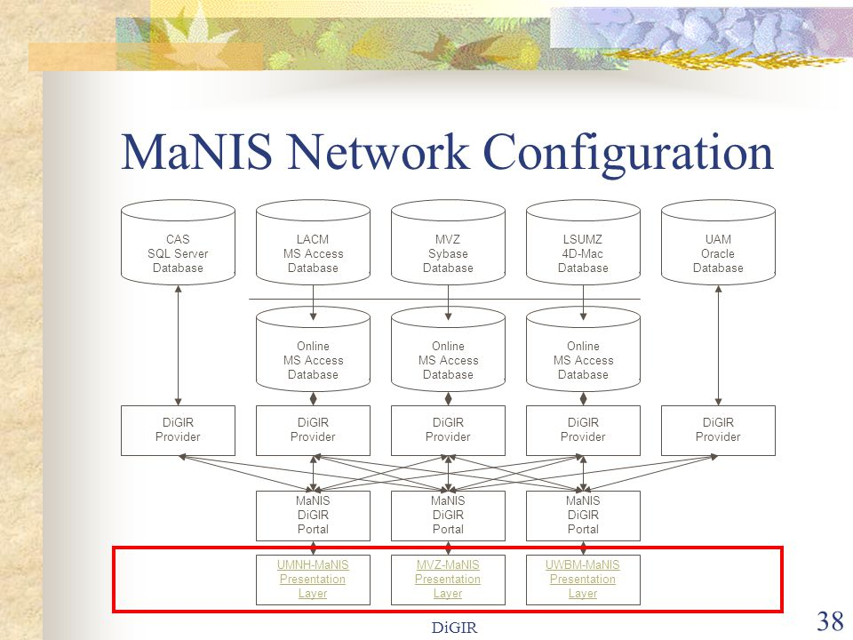 DiGIR 38 MaNIS Network Configuration LACM MS Access Database Online MS Access Database MVZ Sybase Database MaNIS DiGIR Portal LSUMZ 4D-Mac Database Online MS Access Database UAM Oracle Database Online MS Access Database MaNIS DiGIR Portal MaNIS DiGIR Portal MVZ-MaNIS Presentation Layer UMNH-MaNIS Presentation Layer UWBM-MaNIS Presentation Layer DiGIR Provider DiGIR Provider DiGIR Provider DiGIR Provider DiGIR Provider CAS SQL Server Database
