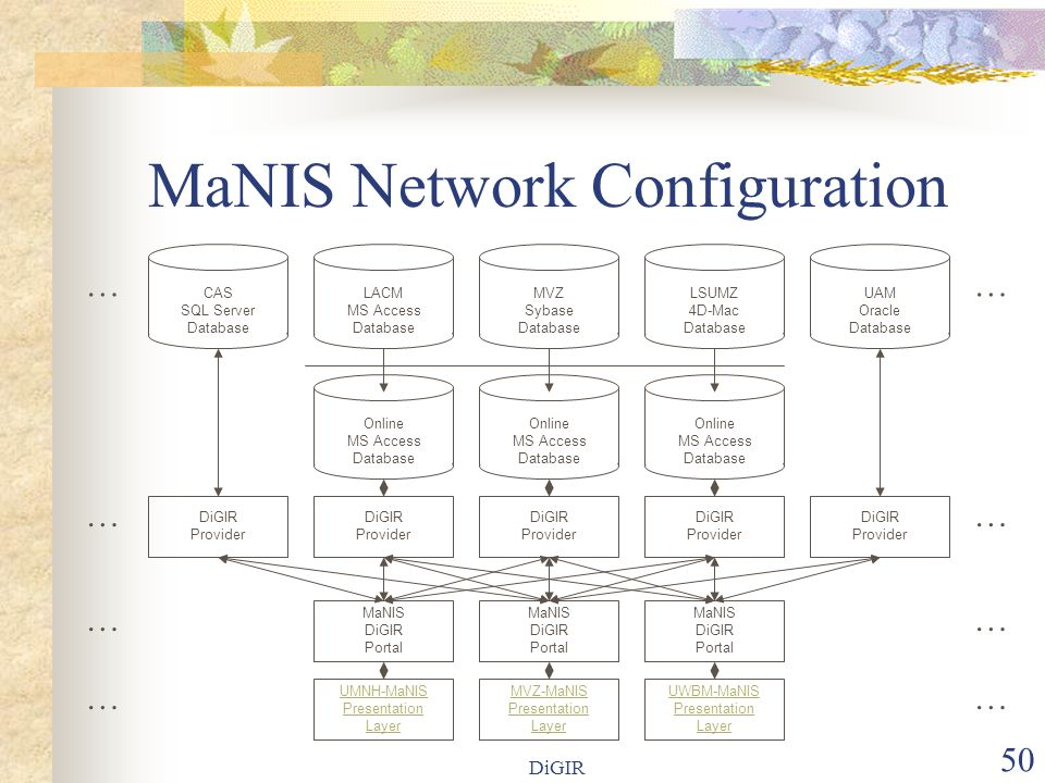 DiGIR 50 MaNIS Network Configuration LACM MS Access Database Online MS Access Database MVZ Sybase Database MaNIS DiGIR Portal LSUMZ 4D-Mac Database Online MS Access Database UAM Oracle Database Online MS Access Database MaNIS DiGIR Portal MaNIS DiGIR Portal MVZ-MaNIS Presentation Layer UMNH-MaNIS Presentation Layer UWBM-MaNIS Presentation Layer DiGIR Provider DiGIR Provider DiGIR Provider DiGIR Provider DiGIR Provider CAS SQL Server Database … … … … …… ……