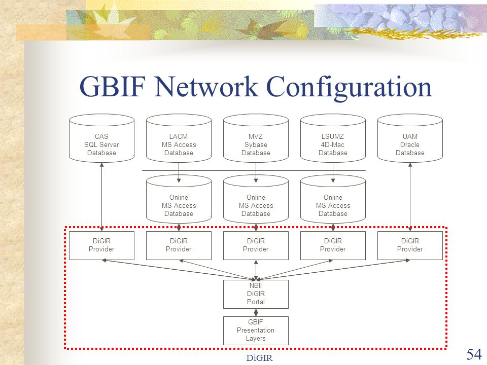 DiGIR 54 GBIF Network Configuration LACM MS Access Database Online MS Access Database MVZ Sybase Database LSUMZ 4D-Mac Database Online MS Access Database UAM Oracle Database Online MS Access Database GBIF Presentation Layers DiGIR Provider DiGIR Provider DiGIR Provider DiGIR Provider DiGIR Provider CAS SQL Server Database NBII DiGIR Portal