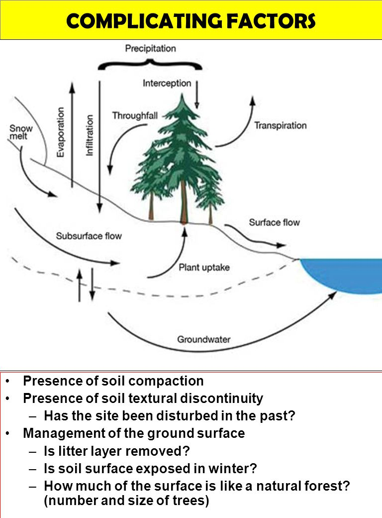 COMPLICATING FACTORS Presence of soil compaction Presence of soil textural discontinuity –Has the site been disturbed in the past? Management of the g