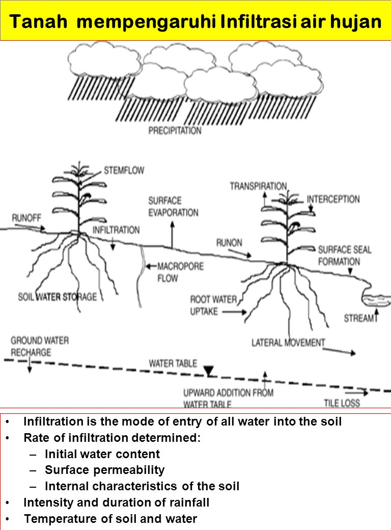 Tanah mempengaruhi Infiltrasi air hujan Infiltration is the mode of entry of all water into the soil Rate of infiltration determined: –Initial water c