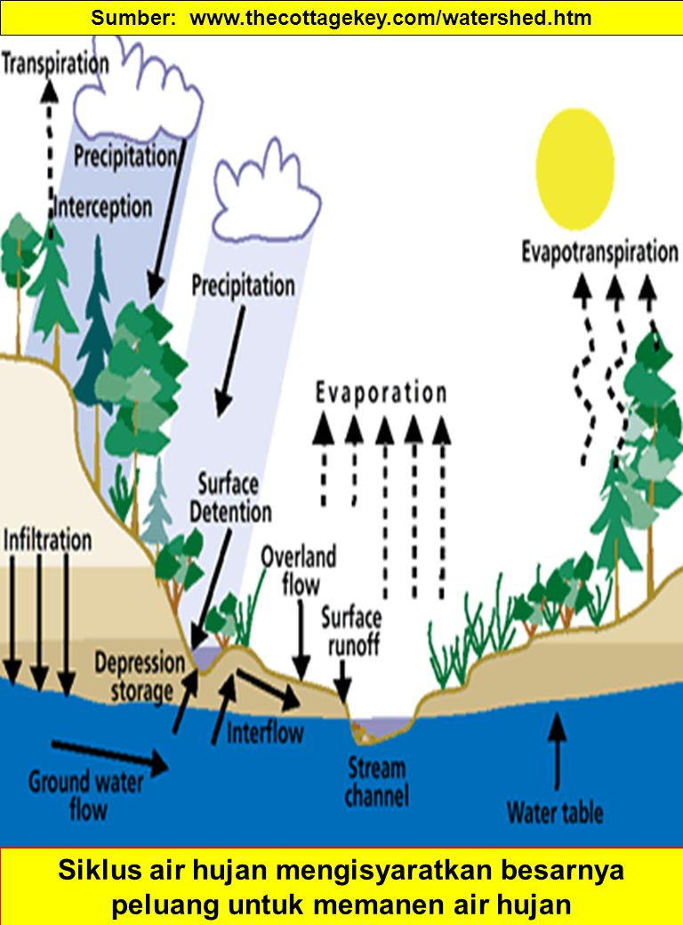 PERGERAKAN LENGAS TANAH Forces affecting the energy of soil water –Matric force (absorption and capillary) –Gravity –Osmotic forces Field Capacity is the amount of water held in the soil after gravitational water had drained away Movement of water is the soil is controlled : –Gravitational forces if saturated –Matric forces if unsaturated