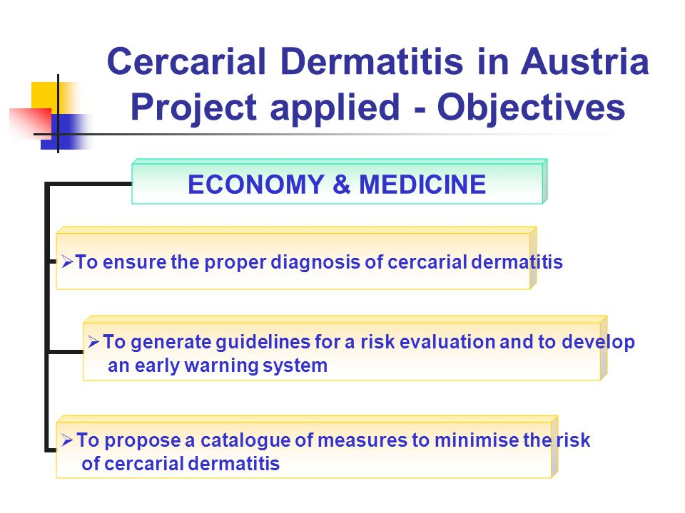 Cercarial Dermatitis in Austria Project applied - Objectives ECONOMY & MEDICINE To ensure the proper diagnosis of cercarial dermatitis To generate guidelines for a risk evaluation and to develop an early warning system To propose a catalogue of measures to minimise the risk of cercarial dermatitis