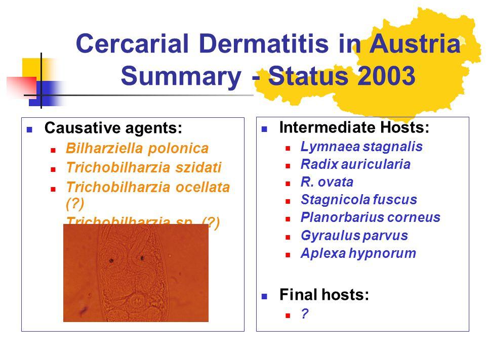 Cercarial Dermatitis in Austria Summary - Status 2003 Causative agents: Bilharziella polonica Trichobilharzia szidati Trichobilharzia ocellata (?) Tri