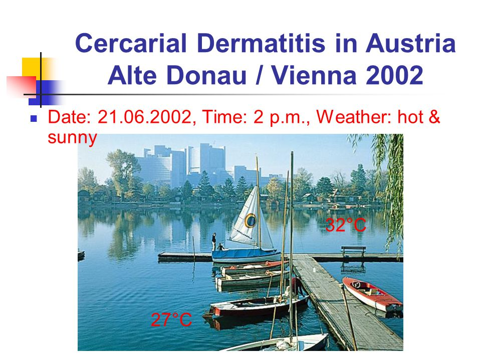Cercarial Dermatitis in Austria Alte Donau / Vienna 2002 Date: 21.06.2002, Time: 2 p.m., Weather: hot & sunny 32°C 27°C