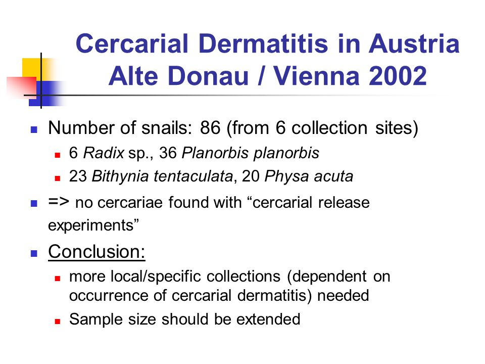 Cercarial Dermatitis in Austria Alte Donau / Vienna 2002 Number of snails: 86 (from 6 collection sites) 6 Radix sp., 36 Planorbis planorbis 23 Bithynia tentaculata, 20 Physa acuta => no cercariae found with cercarial release experiments Conclusion: more local/specific collections (dependent on occurrence of cercarial dermatitis) needed Sample size should be extended