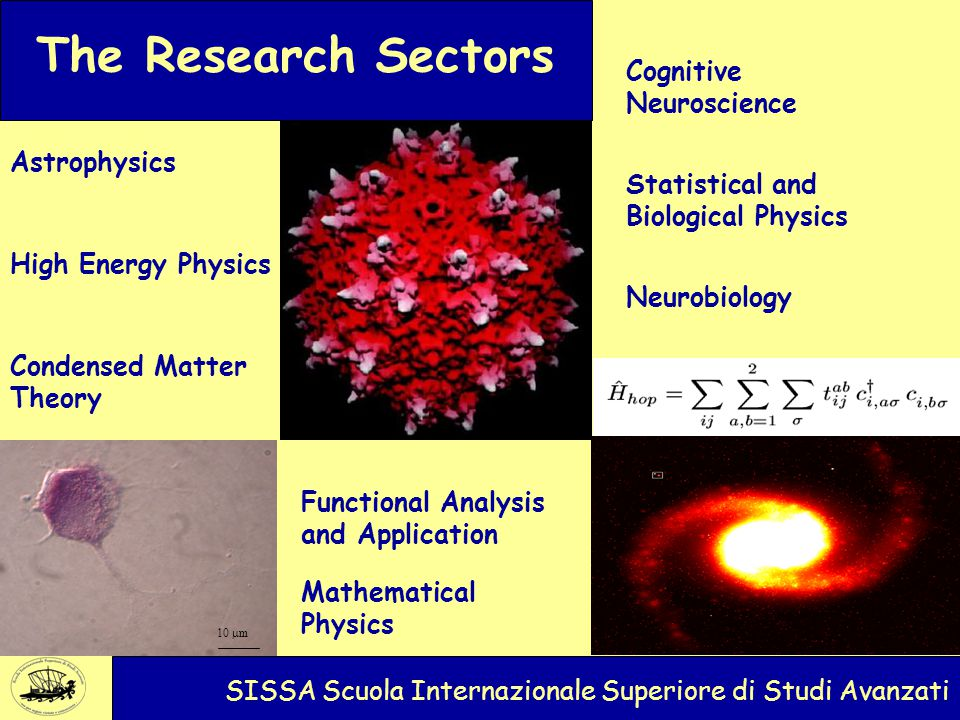 10  m SISSA International School for Advanced Studies The Research Sectors Astrophysics Neurobiology High Energy Physics Statistical and Biological Physics Condensed Matter Theory Cognitive Neuroscience SISSA Scuola Internazionale Superiore di Studi Avanzati Functional Analysis and Application Mathematical Physics