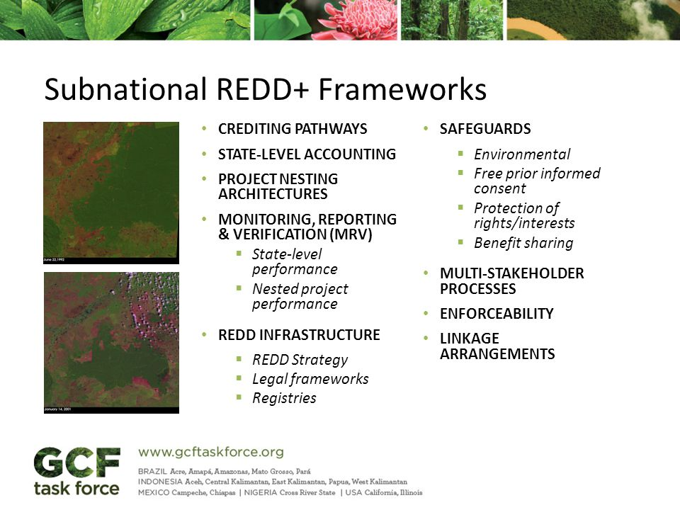 CREDITING PATHWAYS STATE-LEVEL ACCOUNTING PROJECT NESTING ARCHITECTURES MONITORING, REPORTING & VERIFICATION (MRV)  State-level performance  Nested project performance REDD INFRASTRUCTURE  REDD Strategy  Legal frameworks  Registries SAFEGUARDS  Environmental  Free prior informed consent  Protection of rights/interests  Benefit sharing MULTI-STAKEHOLDER PROCESSES ENFORCEABILITY LINKAGE ARRANGEMENTS Subnational REDD+ Frameworks