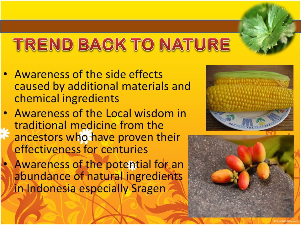 Awareness of the side effects caused by additional materials and chemical ingredients Awareness of the Local wisdom in traditional medicine from the ancestors who have proven their effectiveness for centuries Awareness of the potential for an abundance of natural ingredients in Indonesia especially Sragen