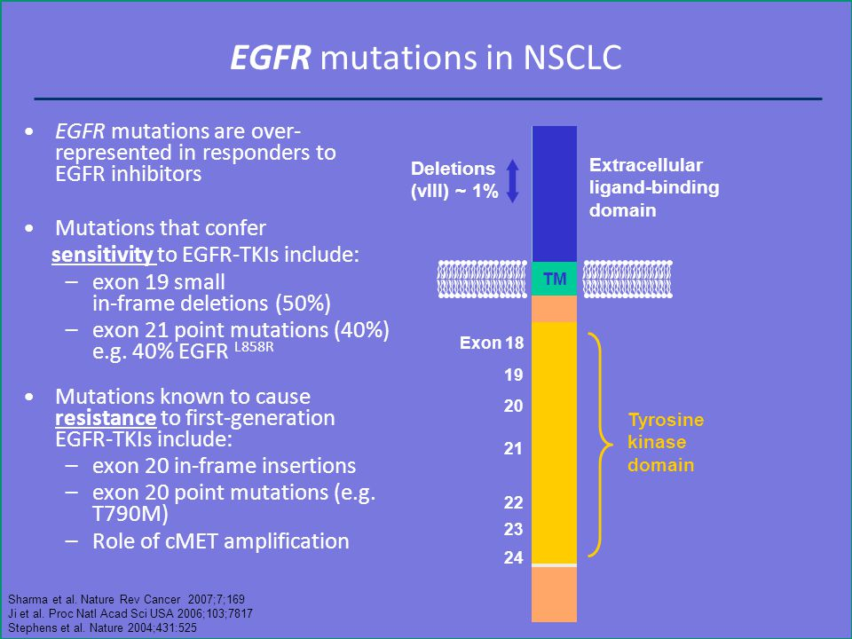EGFR mutations in NSCLC EGFR mutations are over- represented in responders to EGFR inhibitors Mutations that confer sensitivity to EGFR-TKIs include: –exon 19 small in-frame deletions (50%) –exon 21 point mutations (40%) e.g.