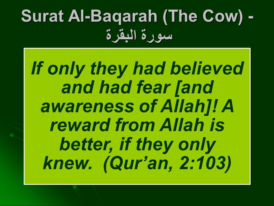 Surat Al-Baqarah (The Cow) - سورة البقرة If only they had believed and had fear [and awareness of Allah].