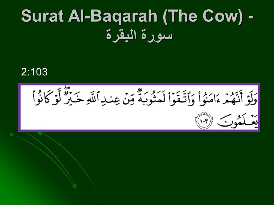 Surat Al-Baqarah (The Cow) - سورة البقرة 2:103