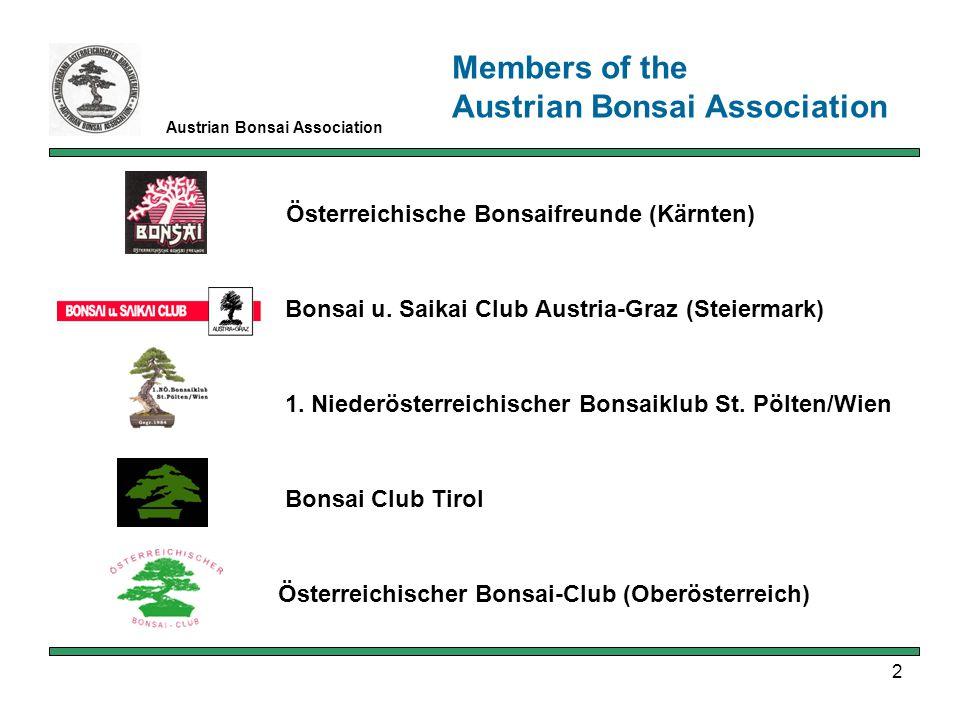 2 Österreichische Bonsaifreunde (Kärnten) Bonsai u.