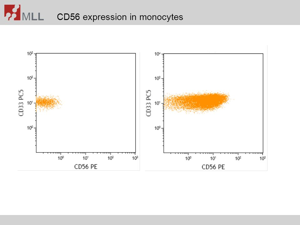 CD56 expression in monocytes