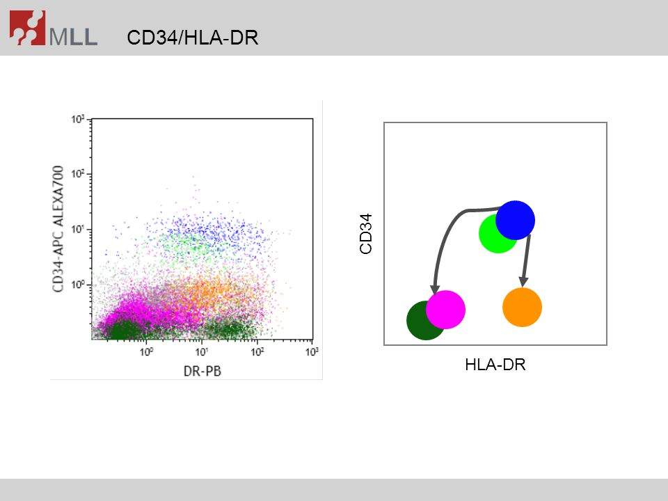 Cluster analysis, five groups (including APL) AML-LD APL
