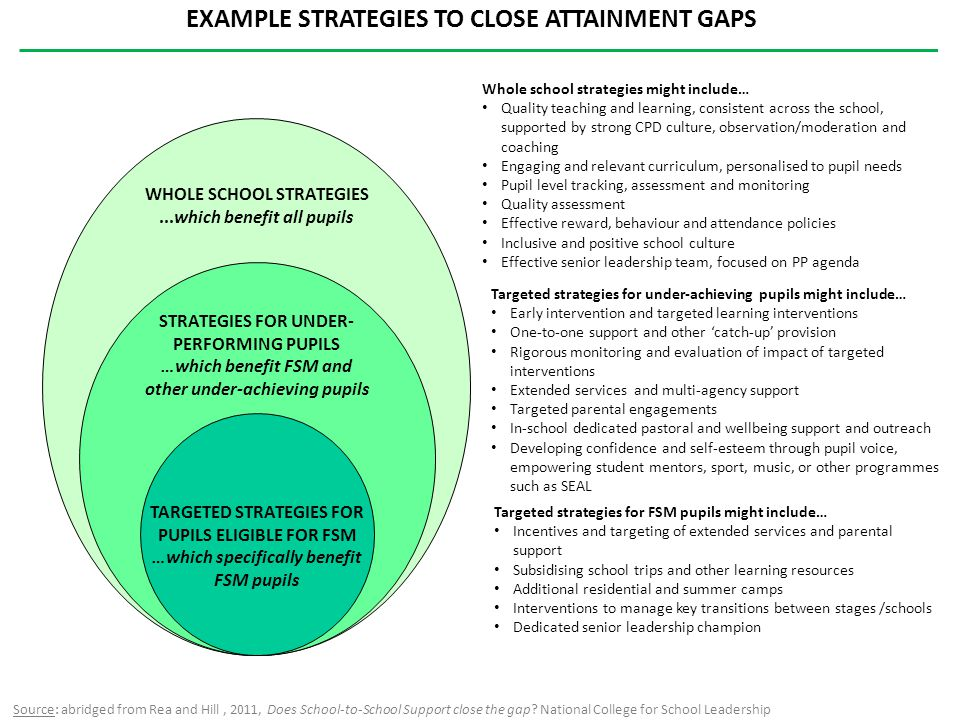 EXAMPLE STRATEGIES TO CLOSE ATTAINMENT GAPS Targeted strategies for FSM pupils might include… Incentives and targeting of extended services and parent