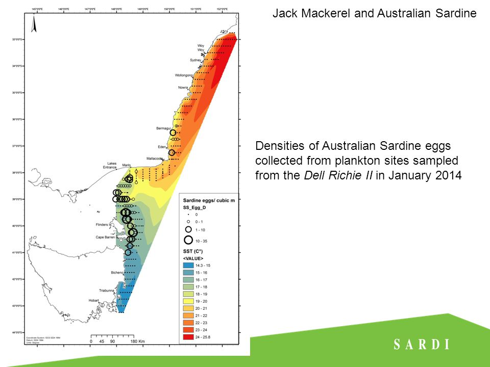 Densities of Australian Sardine eggs collected from plankton sites sampled from the Dell Richie II in January 2014 Jack Mackerel and Australian Sardine