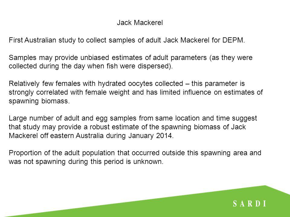 Jack Mackerel First Australian study to collect samples of adult Jack Mackerel for DEPM.