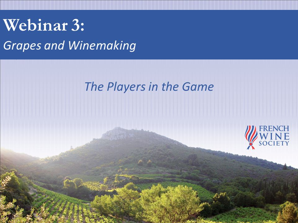Webinar 3: Grapes and Winemaking The Players in the Game