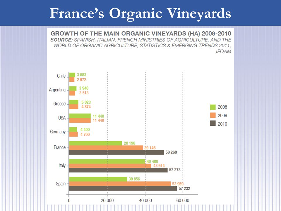 France's Organic Vineyards