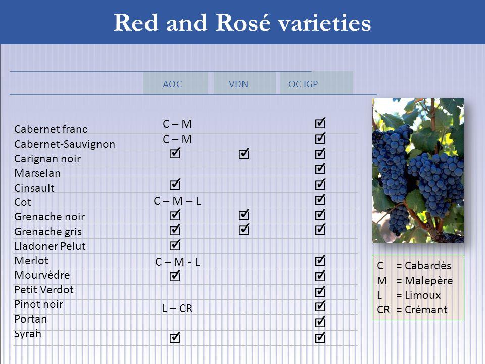 Red and Rosé varieties C= Cabardès M= Malepère L = Limoux CR= Crémant Cabernet franc Cabernet-Sauvignon Carignan noir Marselan Cinsault Cot Grenache noir Grenache gris Lladoner Pelut Merlot Mourvèdre Petit Verdot Pinot noir Portan Syrah AOC VDN OC IGP C – M C – M – L C – M - L L – CR