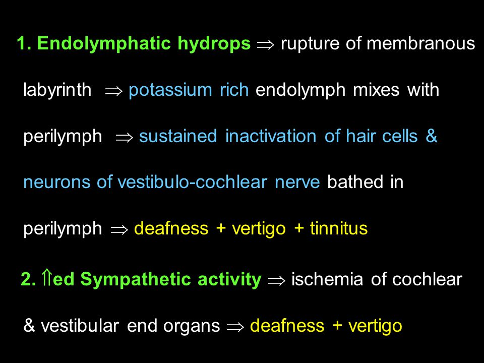 1. Endolymphatic hydrops  rupture of membranous labyrinth  potassium rich endolymph mixes with perilymph  sustained inactivation of hair cells & ne