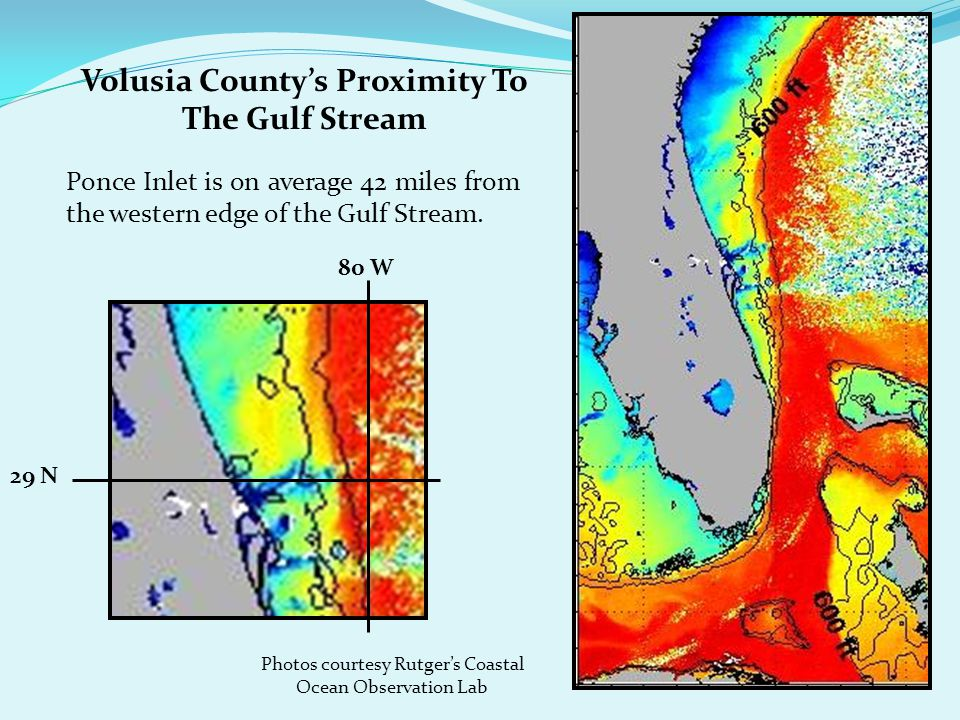 Volusia County's Proximity To The Gulf Stream Ponce Inlet is on average 42 miles from the western edge of the Gulf Stream.