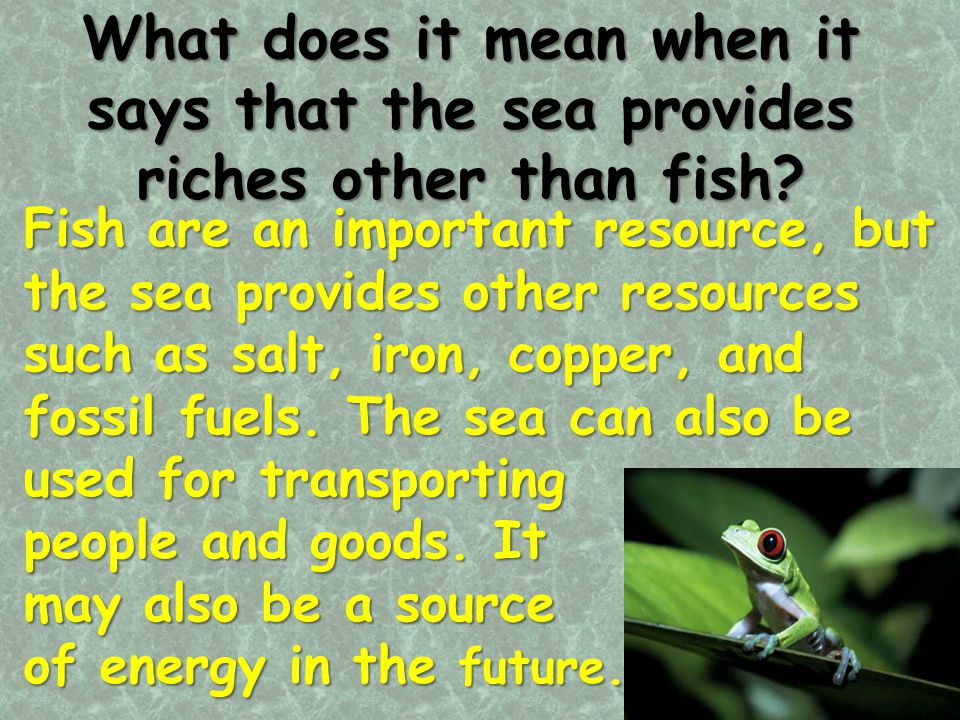 What does it mean when it says that the sea provides riches other than fish? Fish are an important resource, but the sea provides other resources such